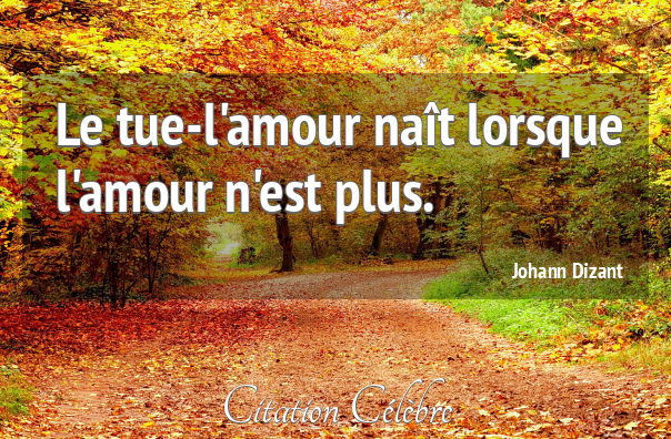 Citation johann dizant 108121