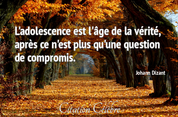 Citation johann dizant 108218